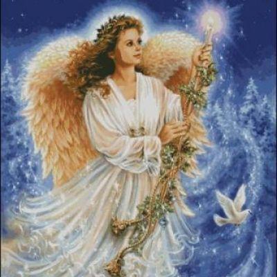 HAEDJG 110 Stardust Angel